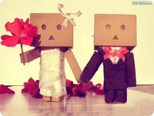 wedding-danbo